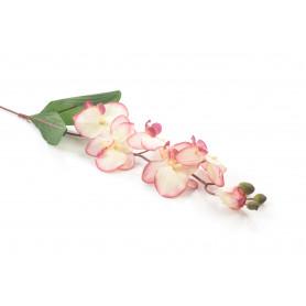 Kwiaty sztuczne: storczyk pojedynczy pakowany 12 szt. kolor