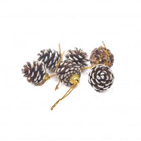 Bożnarodzeniowe szyszki (6) dekoracyjne
