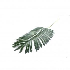 Liść palma ciemny