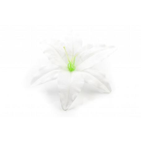 55463-pure white