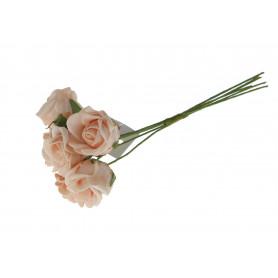 Róża piankowa x6
