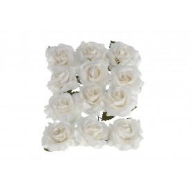 Róża pik mini