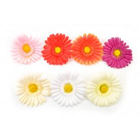 Gerbera główka kwiatowa