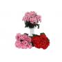 Kwiaty sztuczne pelargonia bukiet