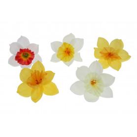 Kwiaty sztuczne żonkil
