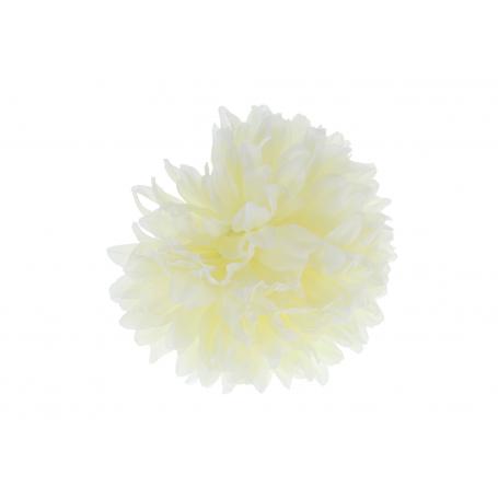 53003-cream