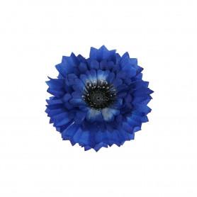 Chaber cieniowany główka kwiatowa