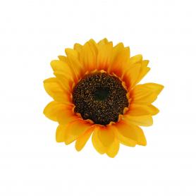 Słonecznik główka kwiatowa