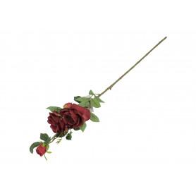 Róża gałązka 3 kwiaty