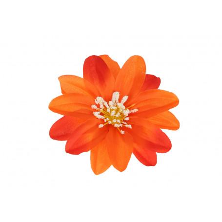 52604-orange