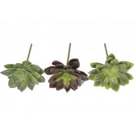 Kwiaty sztuczne sukulent