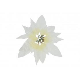 59484-cream