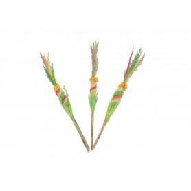 Susze naturalne-palma wielkanocna