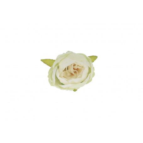 52602-lt cream green