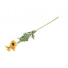 Słonecznik gałązka pojedyncza