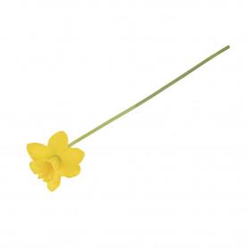 52977-new yellow-30080