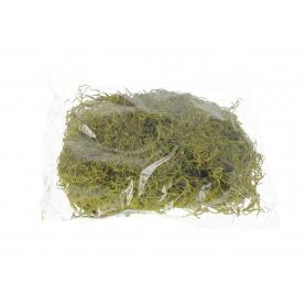 Susz naturalny Tilanica moss zielony paczka