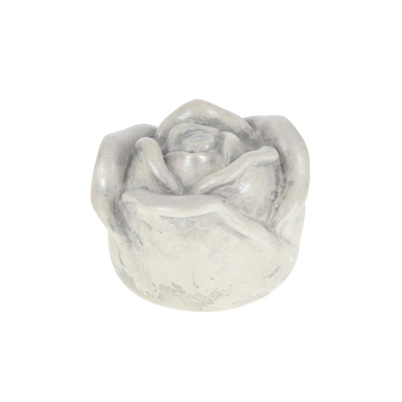 Gipsowy róża średnia