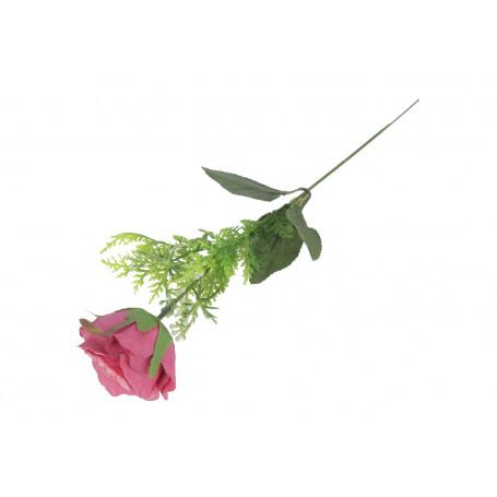 52603-beauty pink