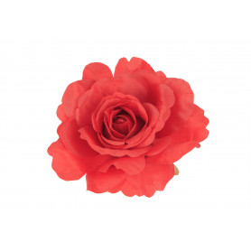 Główka Róży