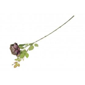 Róża gałązka pojedyncza