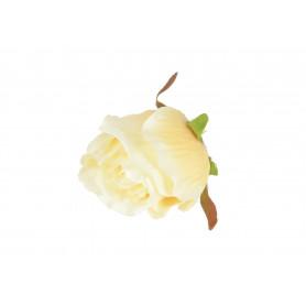 Róża główka kwiatowa