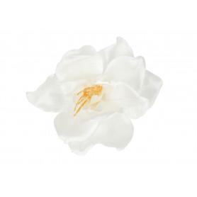 55010-white