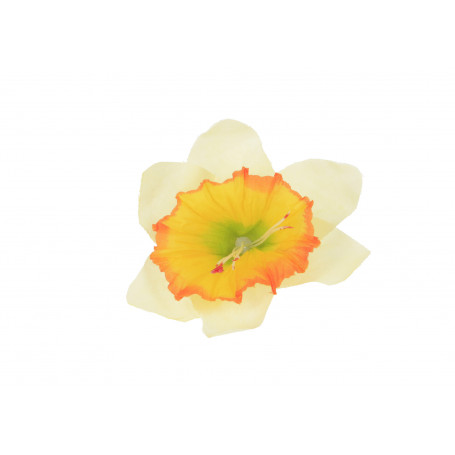 56085-mint yellow