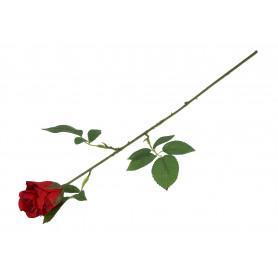 RÓŻA (pojedyncza) 60cm