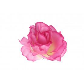 Róża rozwinięta główka kwiatowa
