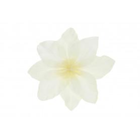 CLEMENTIS (wyrobowy)-Kwiaty sztuczne