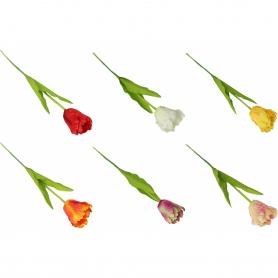 Tulipan gałązka 57565  0004