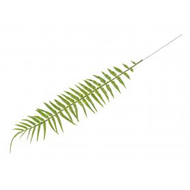 Liść Paproci leśnej gumowany  50327  P25-1920