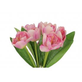 Bukiet Tulipanów 57551  LF03