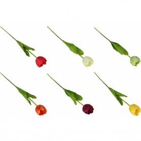 Tulipan gałązka pojedyncza 57555  LF18