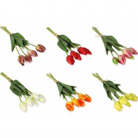 Tulipan bukiet pianka x5 53908 2302