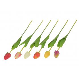 Tulipan gałązka 53916 P46-13