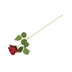 Róża gałązka red burgundy 53927 P15-1902