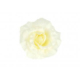Główka Róży 55319
