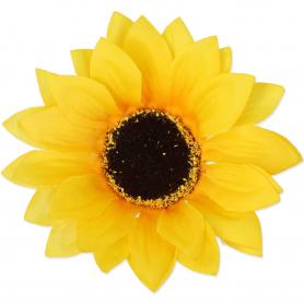 Główka Słonecznika 53997  2998
