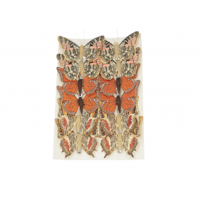 Motylek na klips 8cm 33M