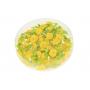 www1044-yellow