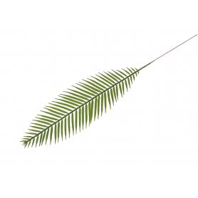 Liść Palmy 53924 Z6115
