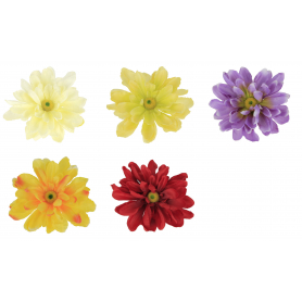 Anemon główka kwiatowa 50322