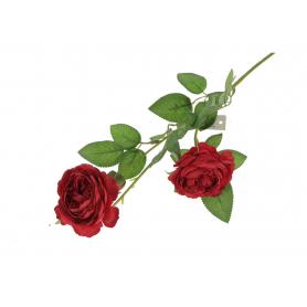 Róża gałązka 56511