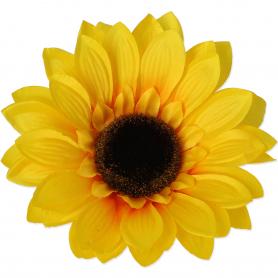 Główka kwiatowa Słonecznika