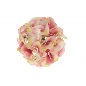 Hortensja główka kwiatowa