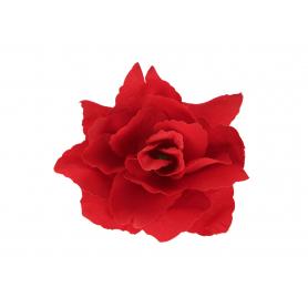 Róża główka kwiatowa 53705 K002