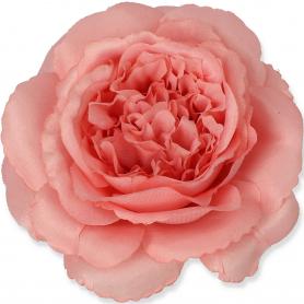 MARY ROSE główka kwiatowa