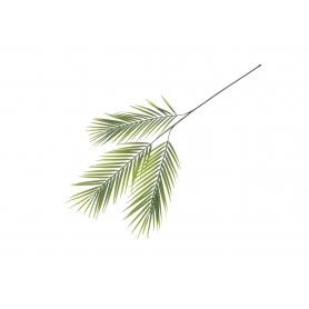 Liść palmy   53946 L389